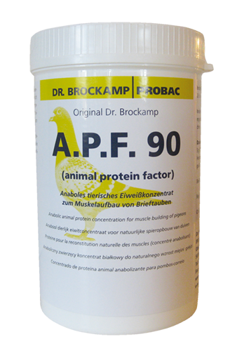 Dr. Brockamp Probac Eiweiß A.P.F.90 500g