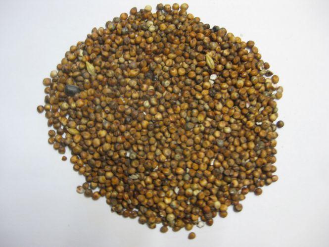 Milocorn - Gladen 2,5kg