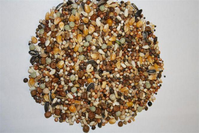 Spinne Stipsky Mischung - Tümmler 25kg